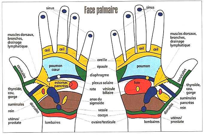 zones-mains-eliminer-douleur1